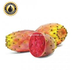 Ароматизатор Inawera Cactus (Кактус)