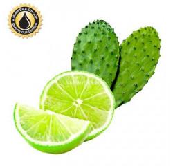 Ароматизатор Inawera Cactus Lime (Кактус с лаймом)