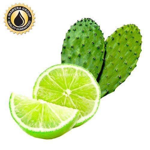 Ароматизатор Cactus Lime (Кактус с лаймом) Inawera