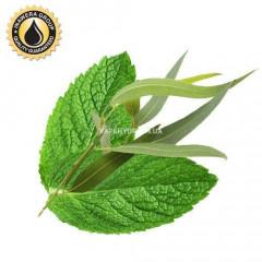 Ароматизатор Inawera Eucaliptus with Mint (Эвкалипт с мятой)