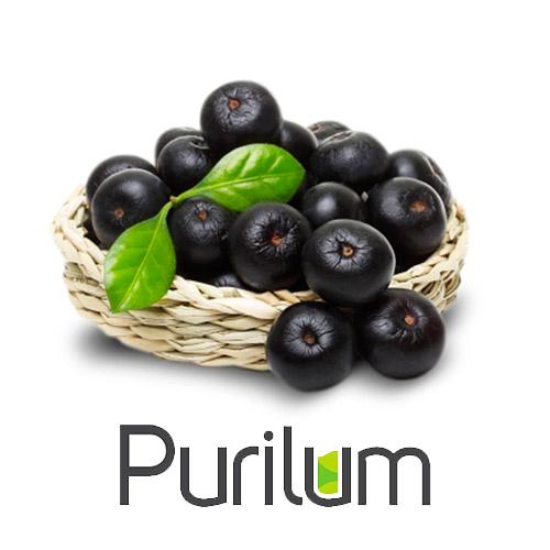 Ароматизатор Acai Berry (Ягоды асаи) Purilum