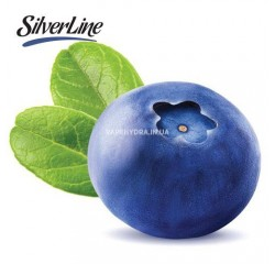 Ароматизатор Capella Silverline Blueberry Extra (Черника)